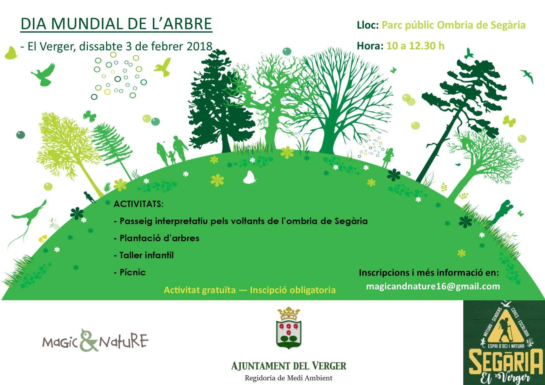 Dia mundial del arbol ajuntament del verger for Dia del arbol 01 de septiembre