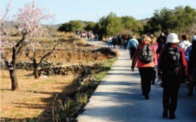 Route of the Camino de Santiago