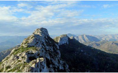 Mount of Segària