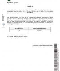 CONCESIÓN DE UNA SUBVENCIÓN POR PARTE DE LA EXCMA. DIPUTACIÓN PROVINCIAL DE ALICANTE
