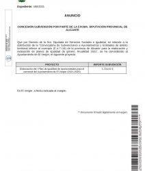 AWARDING OF A GRANT BY THE EXCMA. DIPUTACIÓN PROVINCIAL DE ALICANTE